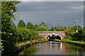 SO8958 : Worcester and Birmingham Canal near Tibberton in Worcestershire by Roger  Kidd