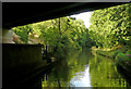 SO8958 : Canal near Tibberton, Worcestershire by Roger  Kidd