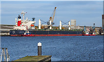 J3576 : The 'Fassa' at Belfast by Rossographer