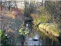 SK3836 : Chaddesden Brook by Ian Calderwood