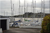 SX4358 : St Budeaux Marina by N Chadwick