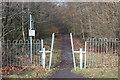 SO2005 : Ebbw Fach Trail, near Roseheyworth, Abertillery by M J Roscoe