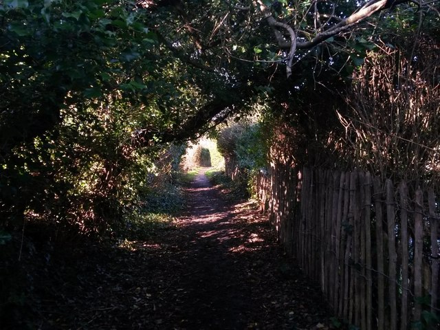 Christchurch: public footpath to the riverbank
