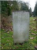 TR0149 : John Ward's grave, church of St. Cosmas & St. Damian, Challock by pam fray