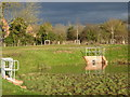 SO8753 : Sustainable Urban Drainage System, new estate, Worcester by Chris Allen