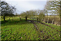 SE5156 : Bridleway towards Moor Monkton : Week 7