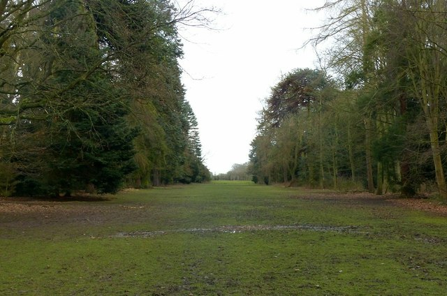 Elvaston Avenue, Elvaston Castle grounds