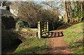 SX8963 : Torbay-Totnes Trail at Cockington by Derek Harper