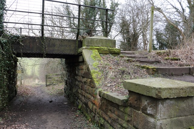 Underbridge on the Link Trail