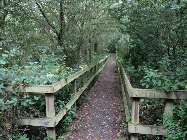 Boardwalk in the Linford Lakes Nature Reserve