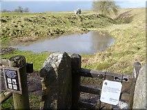 SU1070 : Avebury henge [5] by Michael Dibb