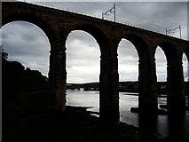 NT9953 : Royal Border Bridge by Ibn Musa