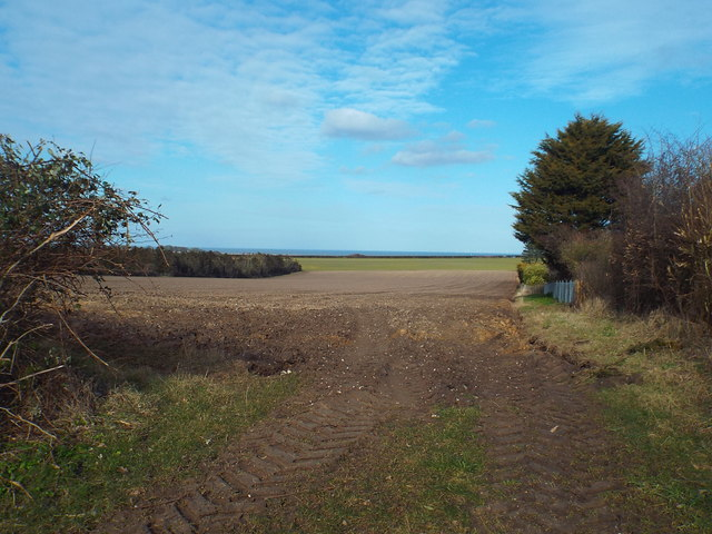 Field near Cley-next-the-Sea