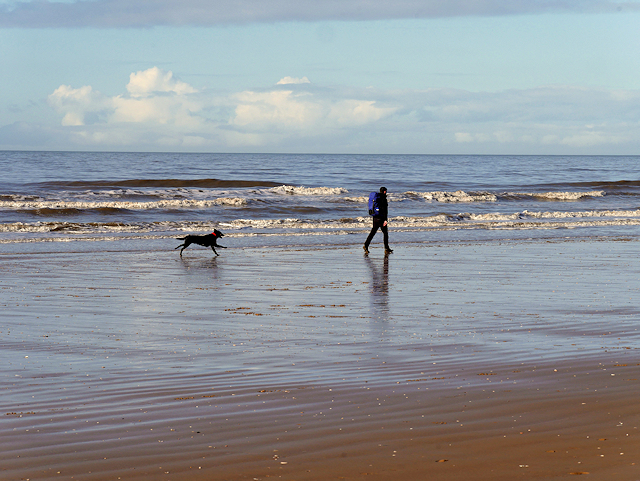 Dog Exercising on Formby Beach