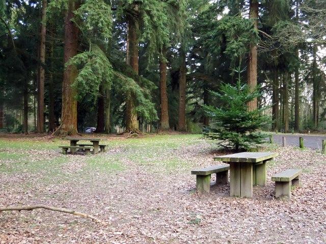 Picnic area at Brock Hill