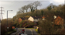SX9066 : Brown's Bridge Road, Torquay by Derek Harper