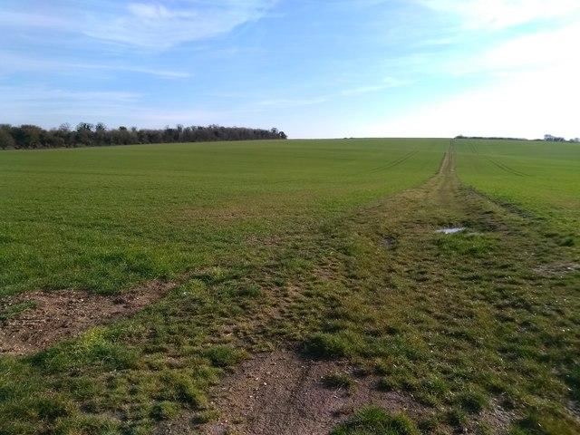 Track near Wilbury Hill