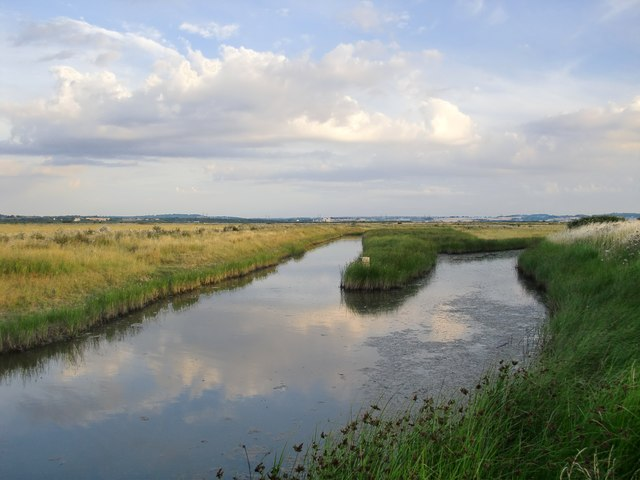 Grazing marshes and fleet, south of Lower Hope Point