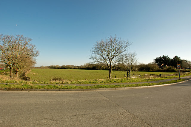 A field of grass alongside the A361 at Chivenor