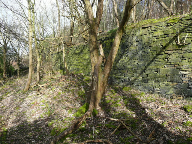 Retaining wall in woodland below Southowram Bank, Halifax