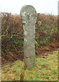 SX1884 : Cross near St Clether by Derek Harper