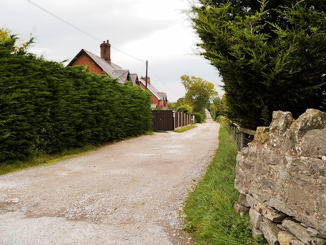 Llanerch Park, Drive to Equestrian Centre