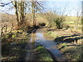SJ1857 : Flooded track west of the River Alyn/Afon Alun by John S Turner