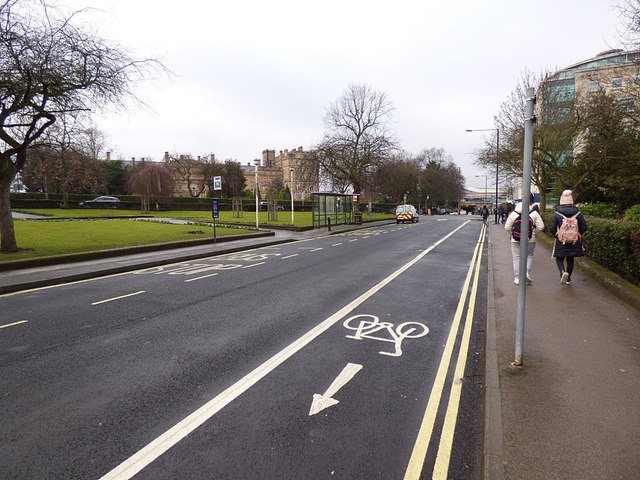 Cycle contraflow on Leeman Road