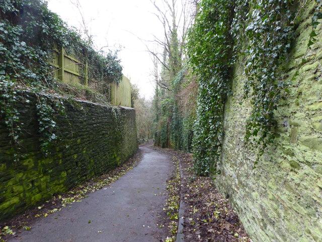 Colston Hill