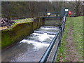 ST6175 : Weir on the River Frome in Eastville Park by Eirian Evans