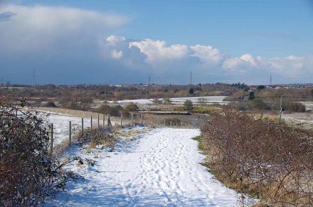Snowy Path at TTNP