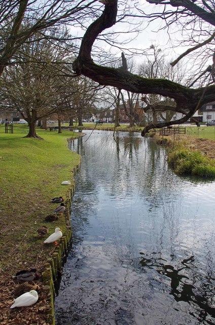 The Brook, Histon