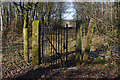 SD5468 : Ride through the wood, Sidegarth by Ian Taylor