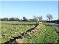 SE3775 : Fields on inside bend of road by Trevor Littlewood