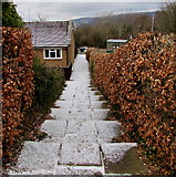 ST3096 : White steps and path in Croesyceiliog, Cwmbran by Jaggery