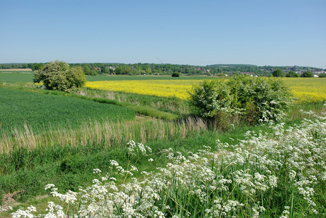 Fields west of River Arun