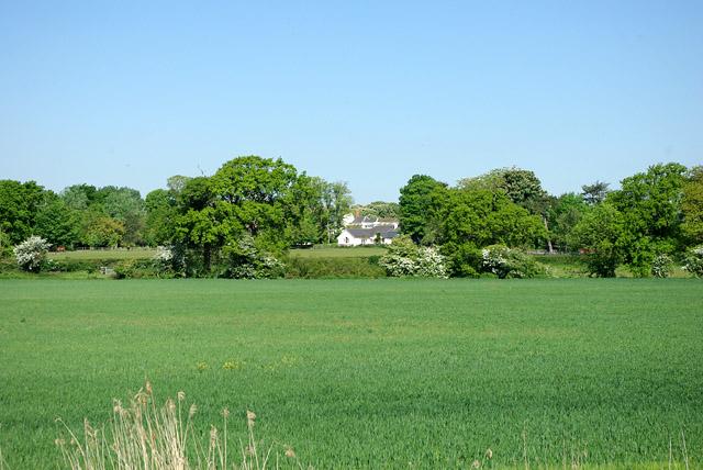 A glimpse of Tortington Manor