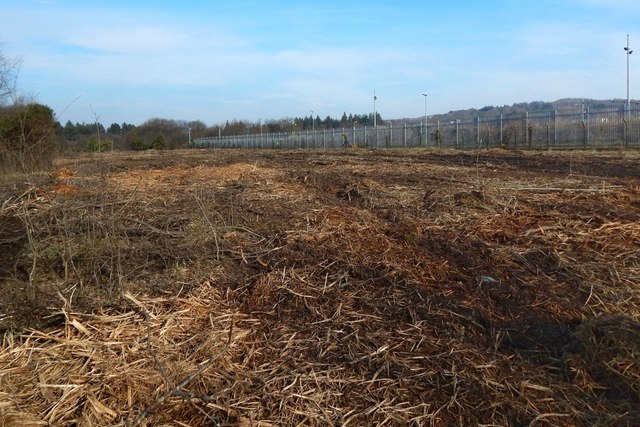 Recently-cleared land at Kilmalid