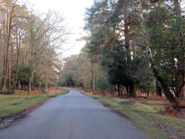 Rhinefield Road to Brockenhurst
