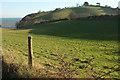 SX9575 : Combe by the coast path by Derek Harper