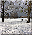 TQ3070 : Snowy Streatham Common (9) by Stephen Richards