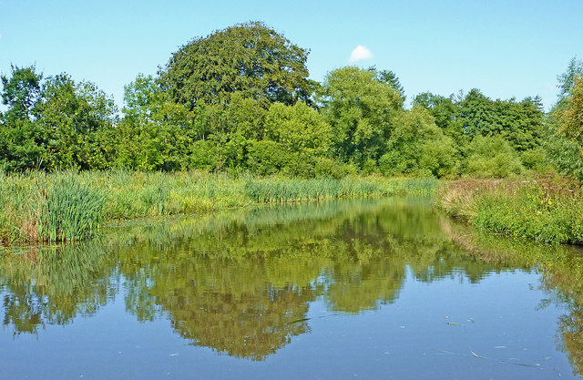 Canal south-east of Tixall in Staffordshire