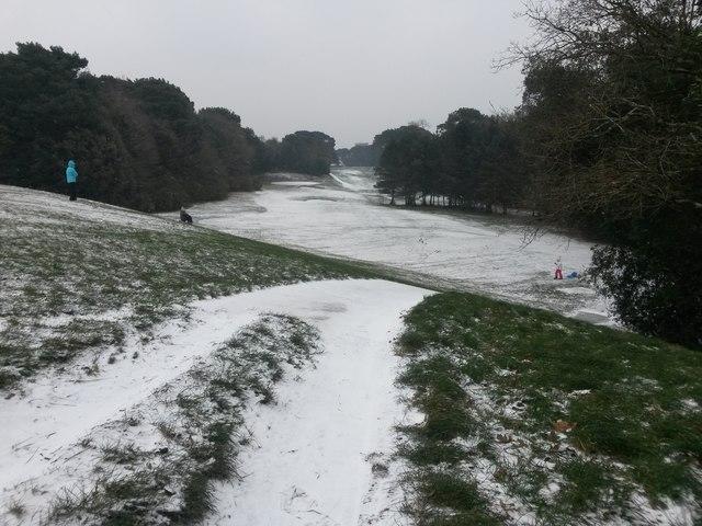 Bournemouth: sledging on Meyrick Park golf course