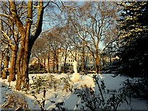 TQ2977 : Pimlico Gardens by PAUL FARMER