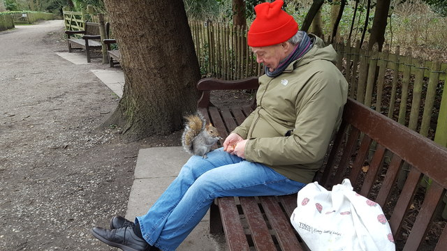 Feeding the Squirrel, Holland Park
