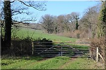SO6856 : Gate into a field beside Paradise Wood by Philip Halling
