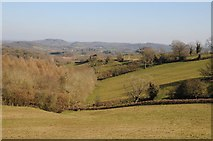 SO6756 : View over Brockhampton by Philip Halling