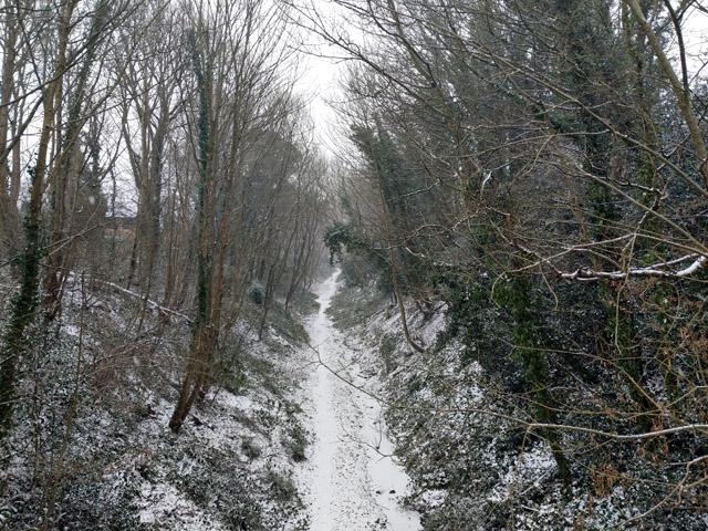 Old railway cutting east of Church Road, Worth