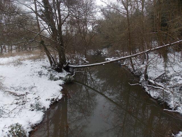 Kinson: a snowy branch across the Stour