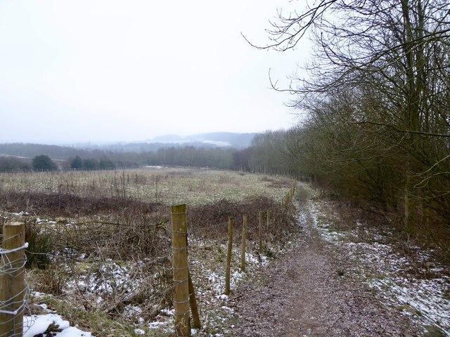 Track on Gorsty Bank